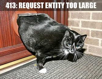 """413: Request entity too large"" -- cat stuck in cat door"