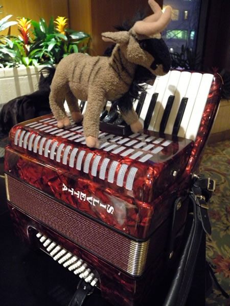 Plush gnu on top of my travelling accordion