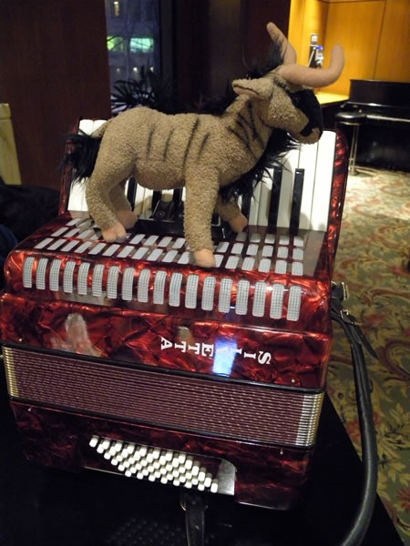 Plush gnu on top of my accordion