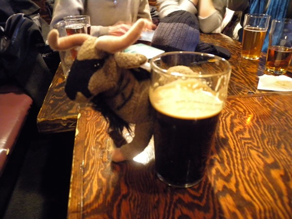 My plush gnu with a glass of oatmeal stout
