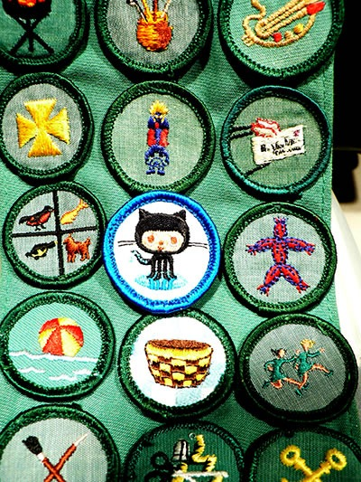 Sash with many nerd merit badges