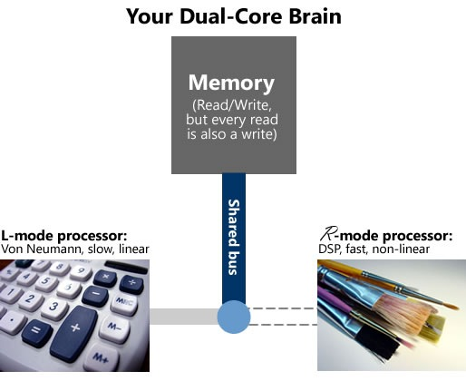 "Diagram showing a ""Dual core"" model of the brain"