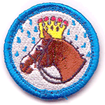 homonyms_nerd_merit_badge
