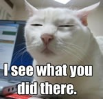 "LOLcat: ""I see what you did there"""