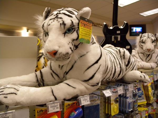 09 tiger