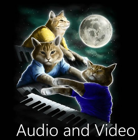 """Three Keyboard Cats"" pardoy of the ""Three Wolf Shirt"": ""Audio and Video"""