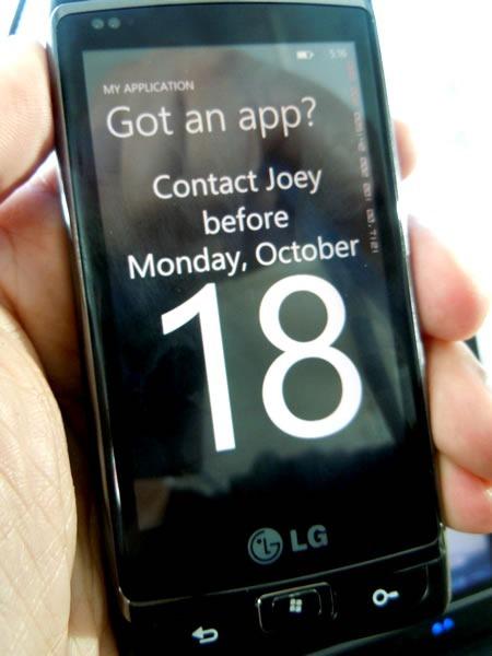 contact joey