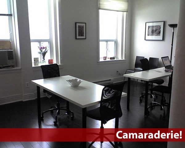 Photo of Camaraderie's main common space