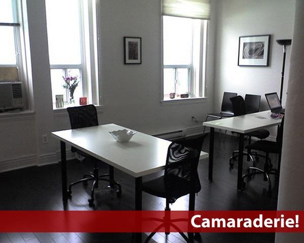Photo of Camaraderie's main common space