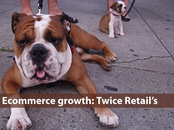 """Ecommerce Growth: Twice Retail's"": Big dog beside little dog"