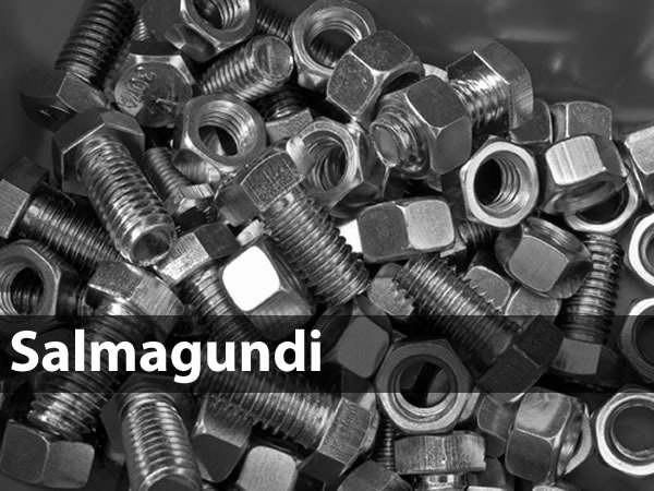 salmagundi nuts and bolts