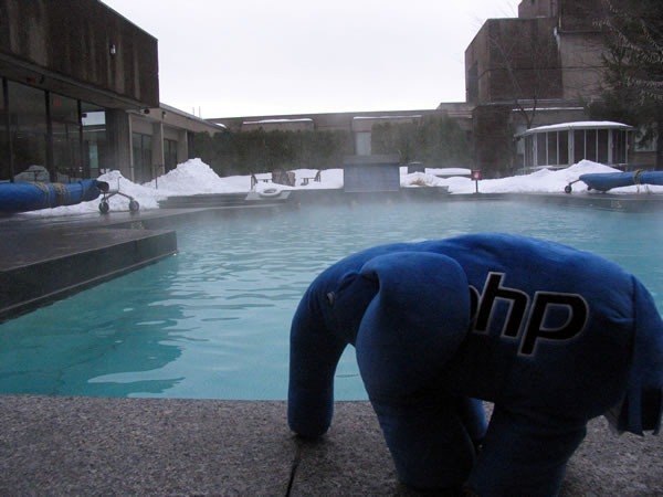 A PHP stuffed elephant by the outdoor rooftop pool at the Hilton Bonaventure