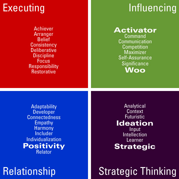 strengthsfinder themes