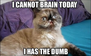 cannot brain today small