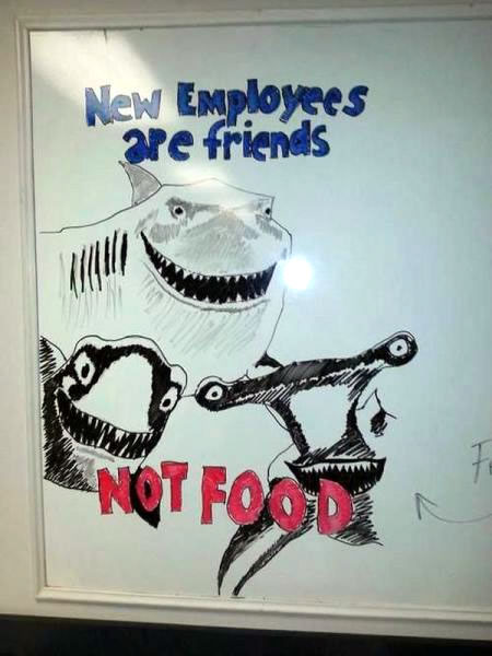 new employees are friends not food