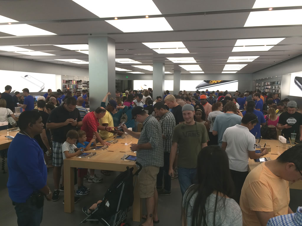 tampa apple store sept 20 2014