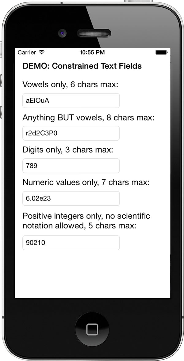 constrained text fields demo app