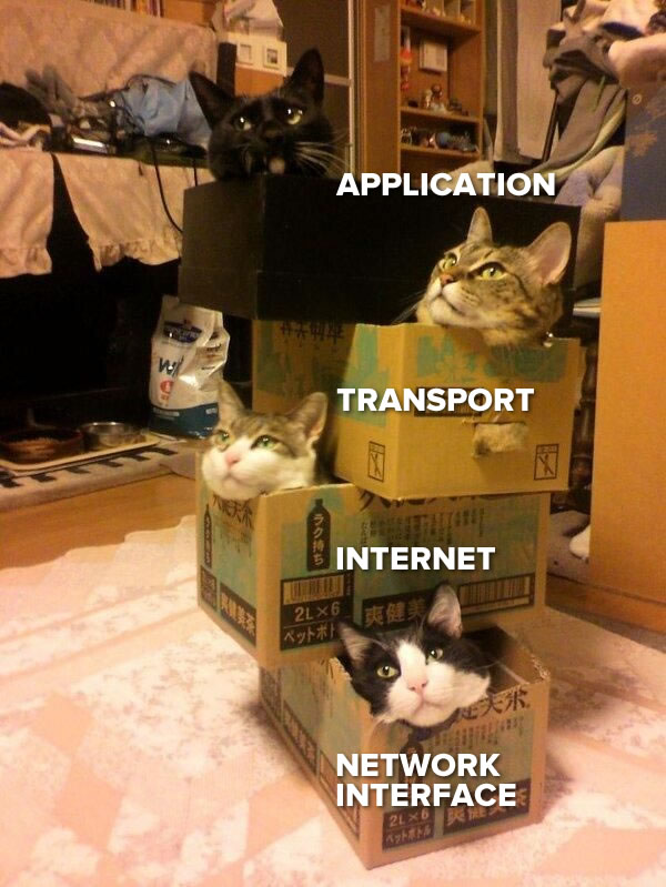 Photo: A stack of four boxes, each with a cat in it. The cats are labeled, from top to bottom: Application, transport, internet, and network interface.